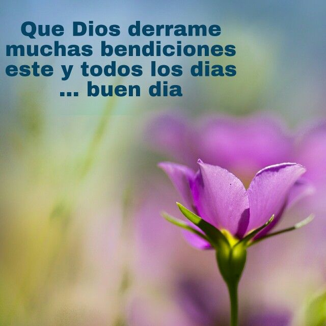 Pin By Norma On Fraces Y Mas Positive Quotes Healing Words Prayer For Husband Share the best gifs now >>>. positive quotes