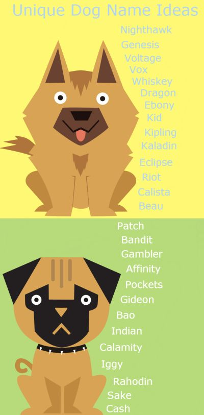 Awesome list of unique dog names. Find thousands more at