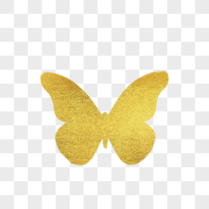 Butterfly Png Images With Transparent Background Free Download On Lovepik Com Cartoon Butterfly Butterfly Illustration Butterfly Images