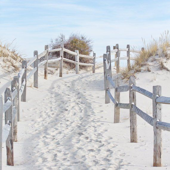 Beach Photography Coastal Wall Art Sand Dune Wall Art Beach