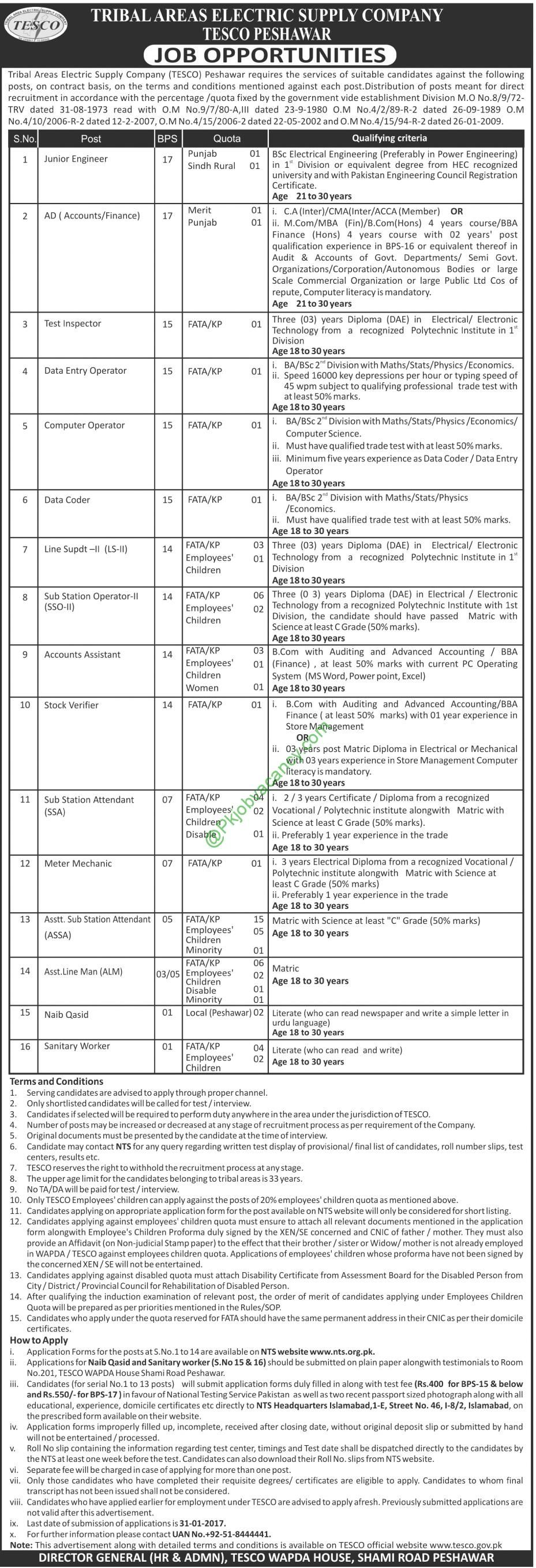 Tribal Areas Electric Supply Company Jobs Application Form Download