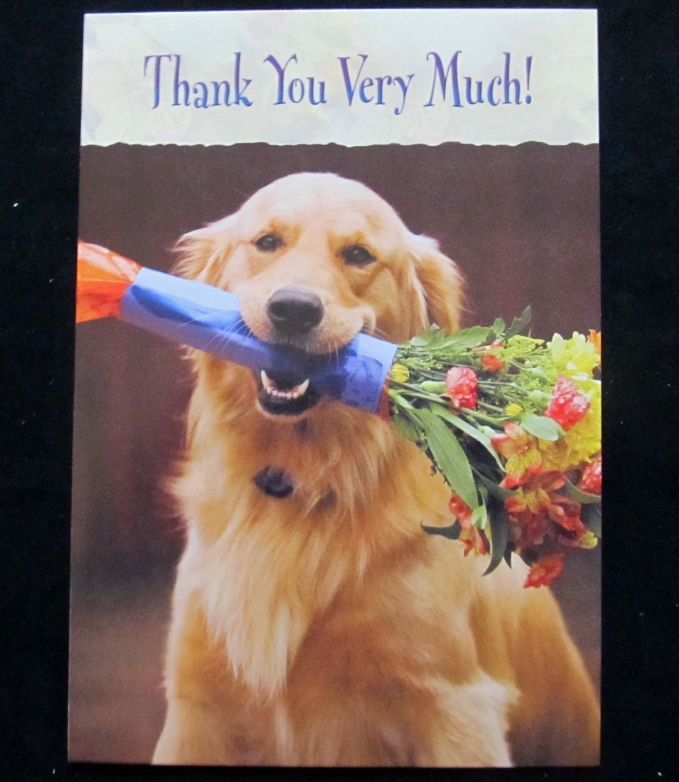 Details About Leanin Tree Thank You Dog Dogs Humor Greeting Card