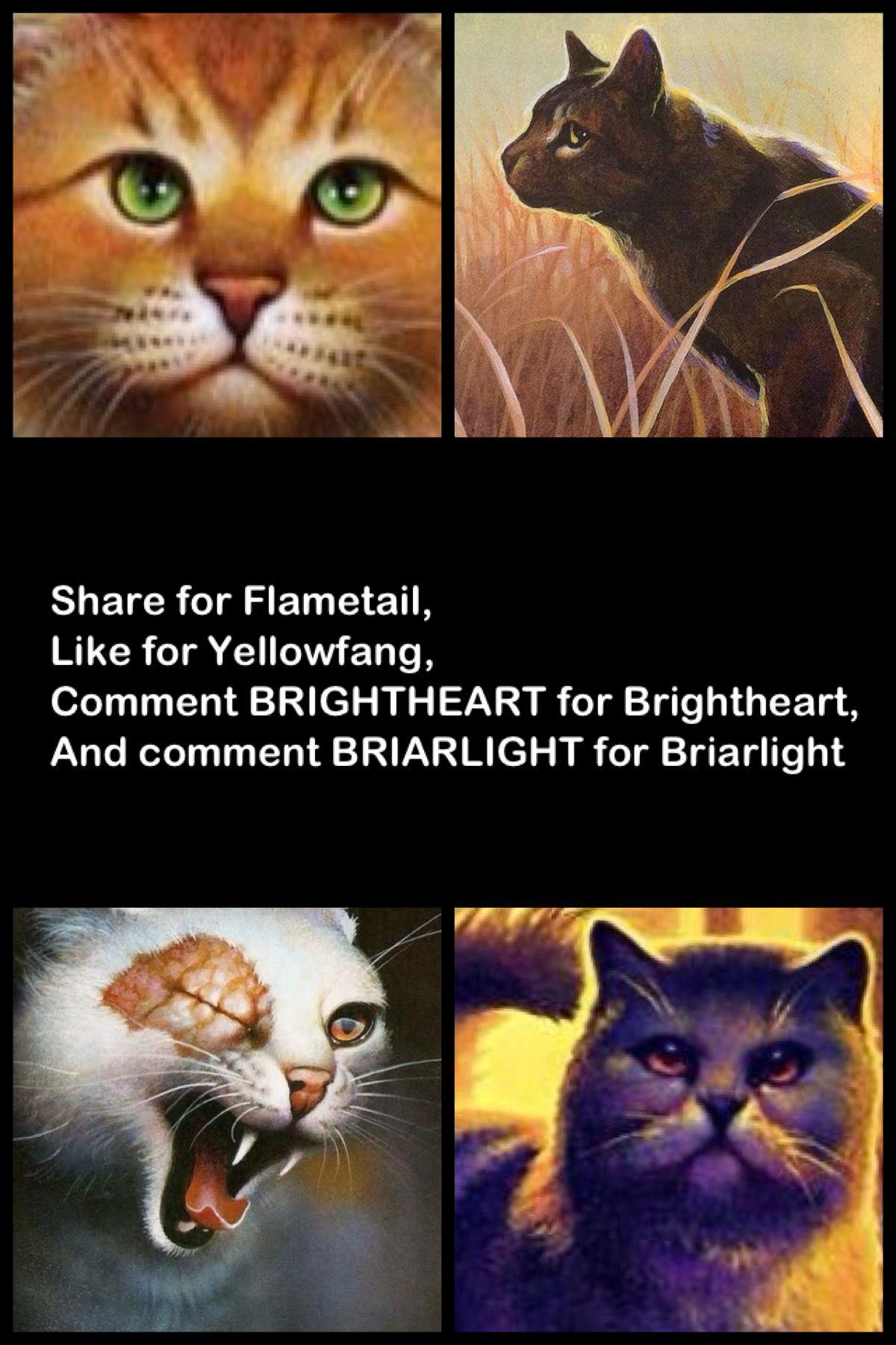 Briarlight!