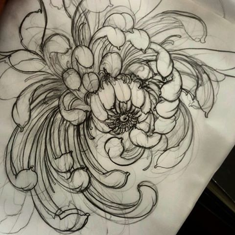 Quick chrysanthemum! #tattoo #tattoos #tattooworkers # ...
