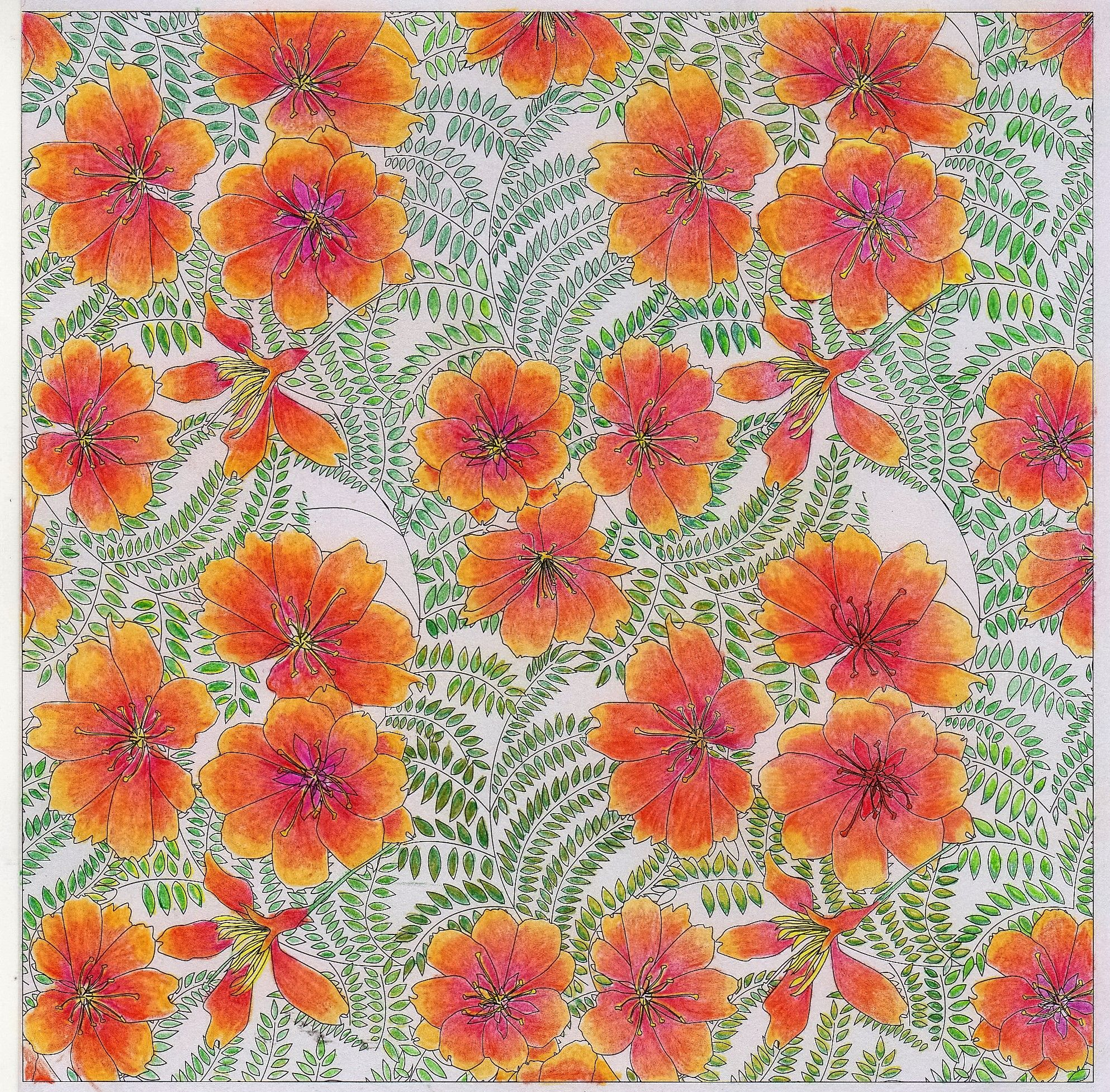 Japanese Flowers | Coloring Book Pages | Pinterest | Japanese flowers