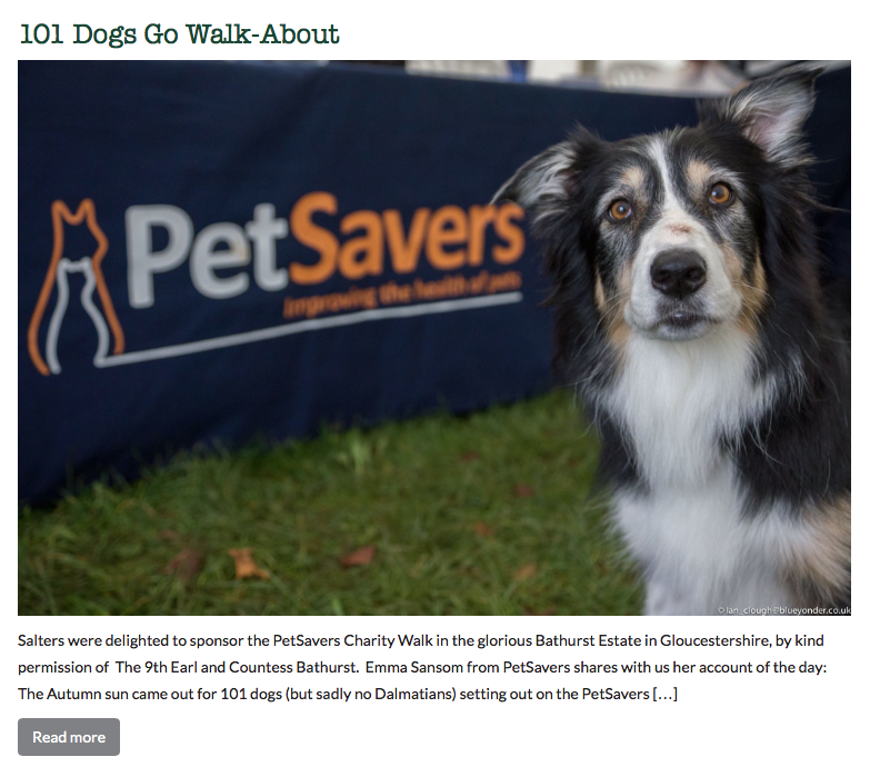 Salters Were Delighted To Sponsor The Petsavers Charity Walk In The Glorious Bathurst Estate In Gloucestershire By Kind Permission Of Photo Contest Dogs Photo