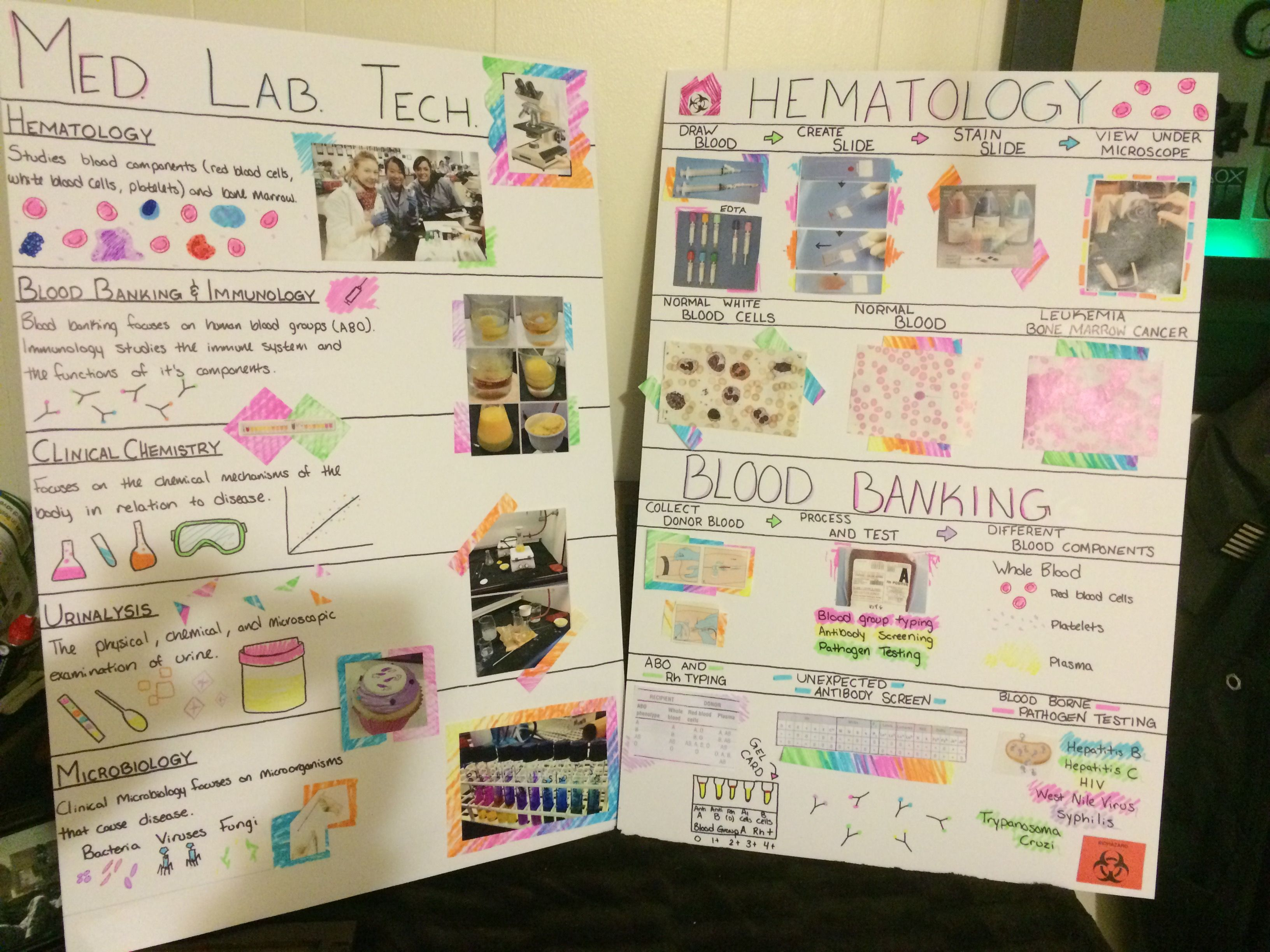 Health Information Technology Project Topics
