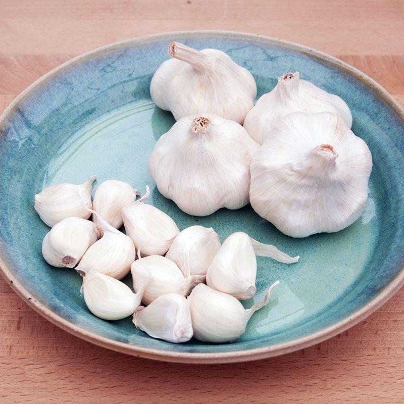 Choose The Best Type Of Garlic For Your Garden Tutorials 400 x 300