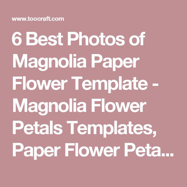 6 best photos of magnolia paper flower template magnolia flower 6 best photos of magnolia paper flower template magnolia flower petals templates paper flower maxwellsz