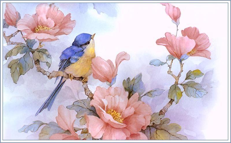Album De Imagenes Para La Inspiracion Arte De Aves Pintura De Pajaros Pajaros Y Flores