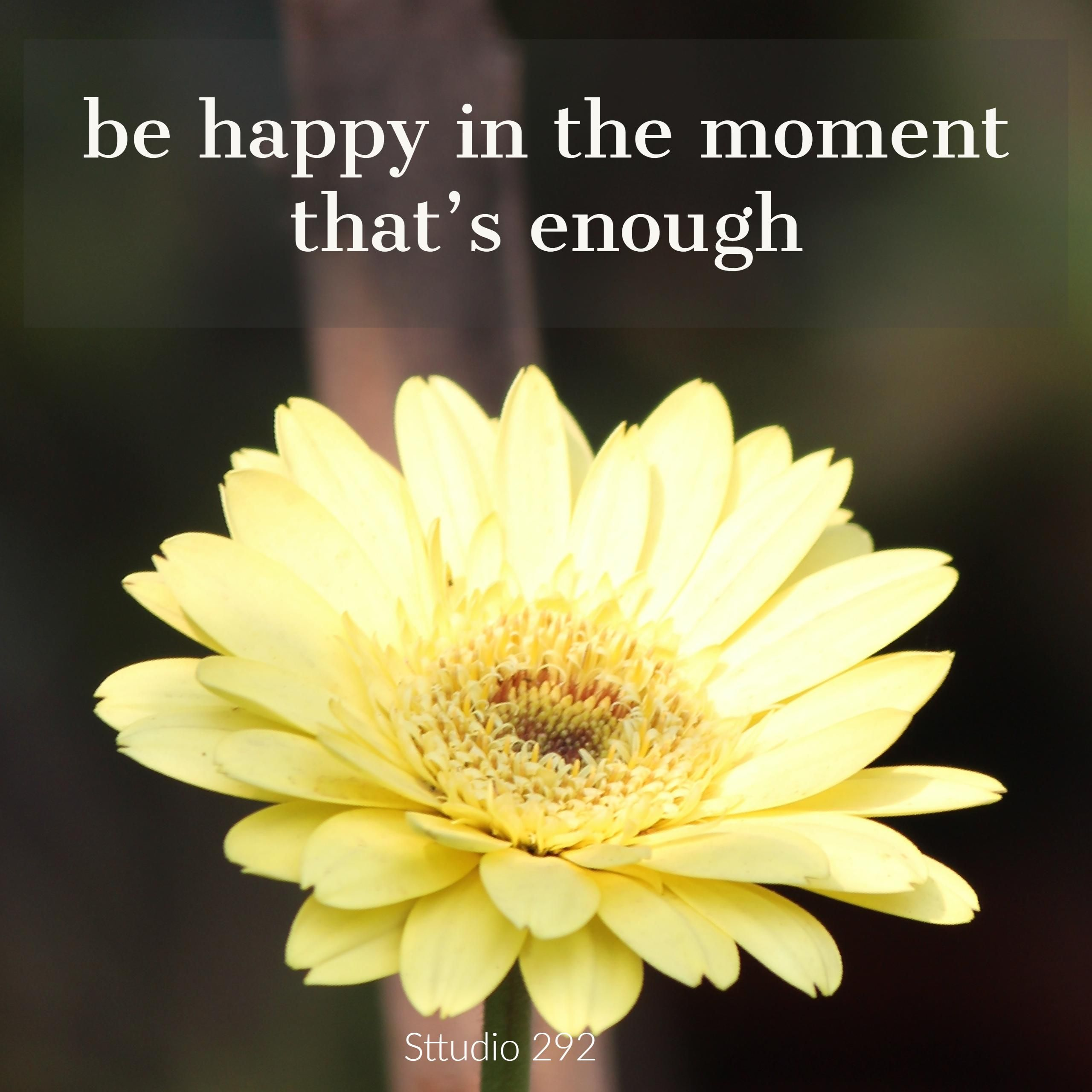 Beautiful Yellow Gerbera Daisy Flower Quotes On Happiness With