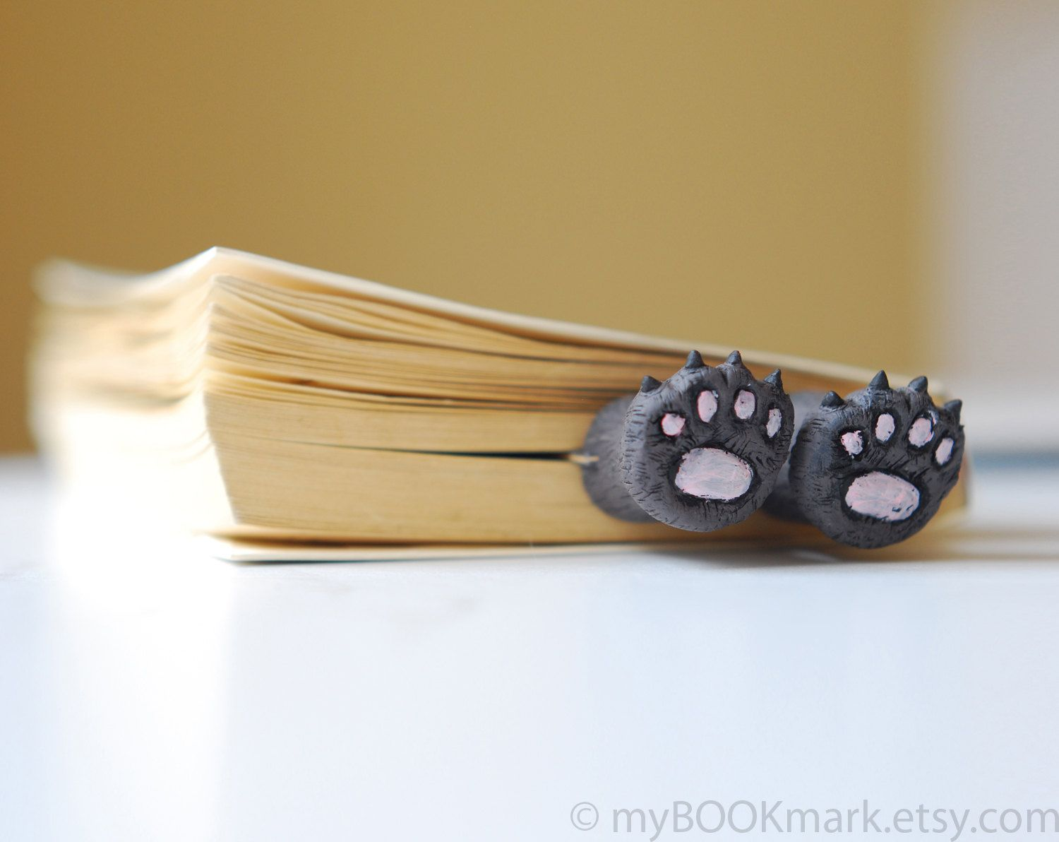 Cat paws .Bear paws in the book. Funny gift. Cat in book for child, children, kids, for her, all, hostess..