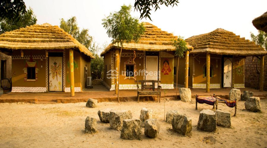 Get An Amazing Safari With Bishnoi Village Safari And Enjoy The