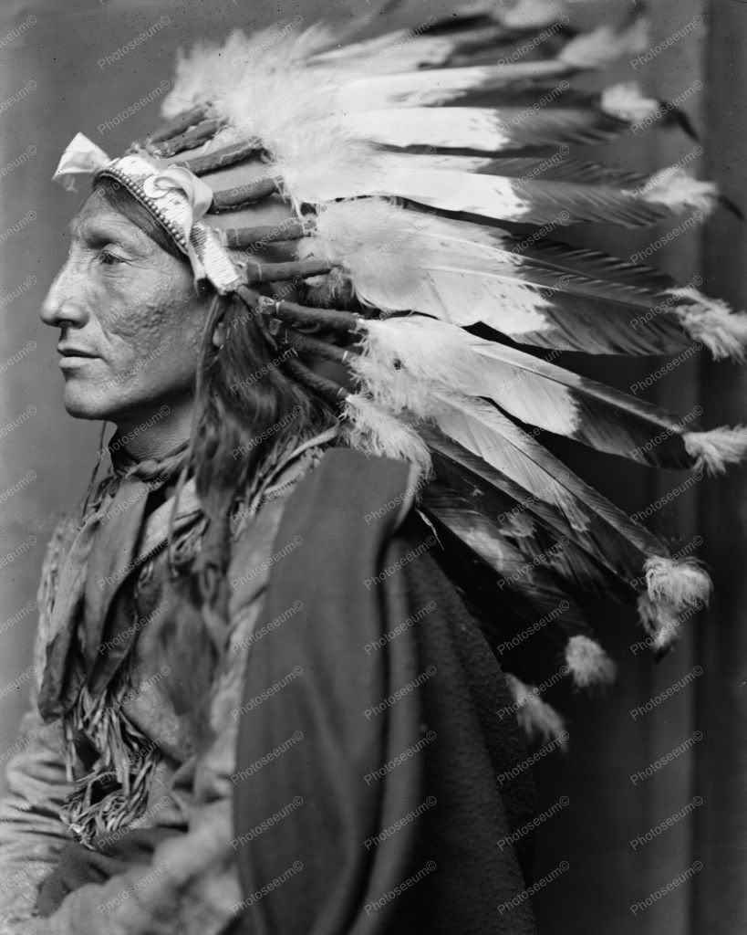 Whirling Horse American Indian Sioux Chief. Dry plate ...