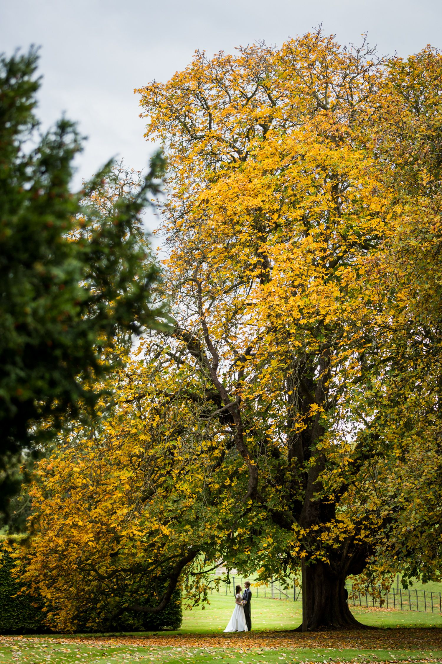 The Horse Chestnut Makes A Fabulous Backdrop To An Autumn Wedding Image By Kirsty Matts Yorkshire Wedding Photographer Wedding Inspiration Fall Autumn Wedding