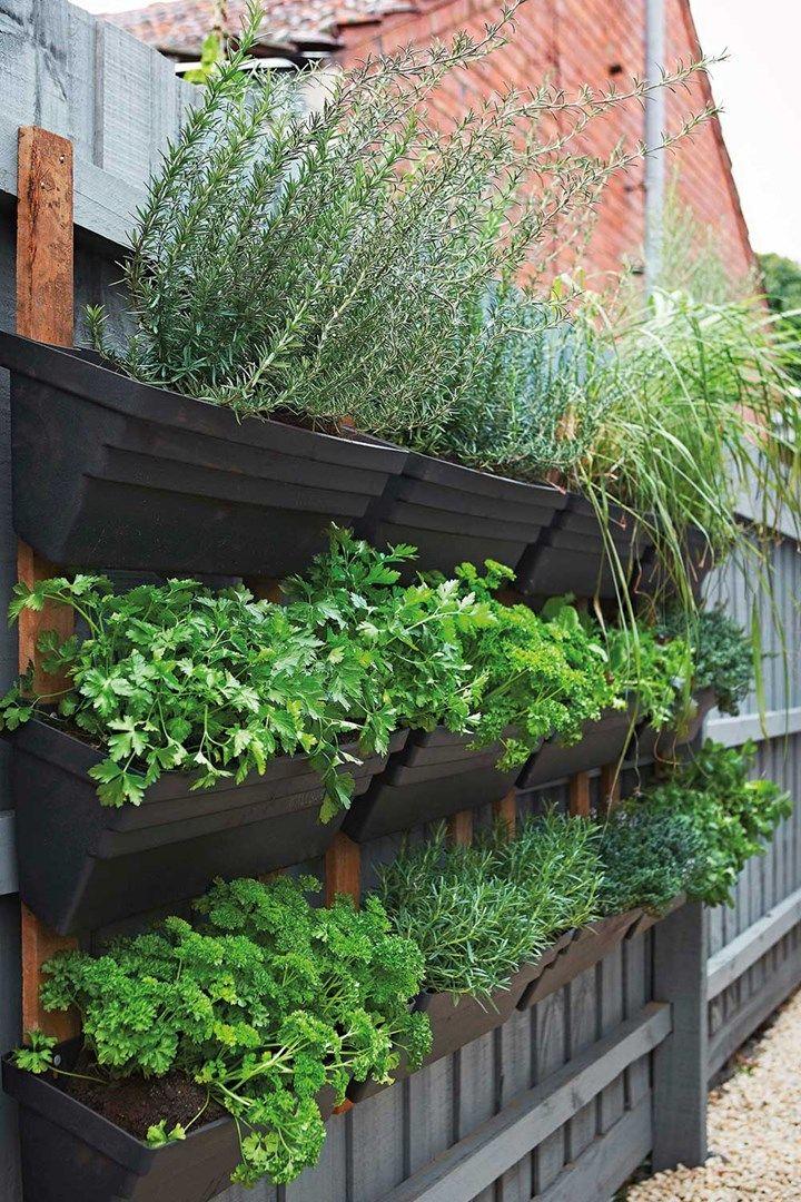 The secret to homegrown vegetables Garden ideas