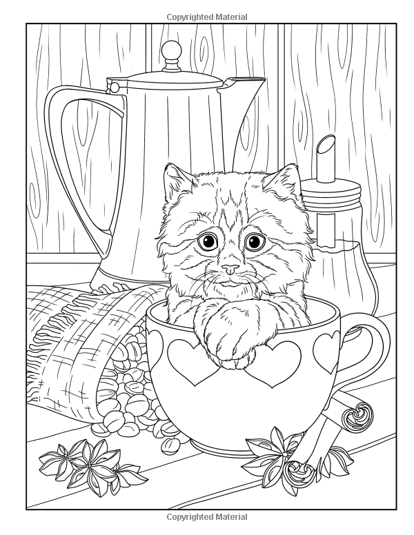 Amazonsmile Lovely Kittens Coloring Book For Adults 9781979377324 Happy Coloring Juliana Emer Kitten Coloring Book Cat Coloring Page Animal Coloring Pages