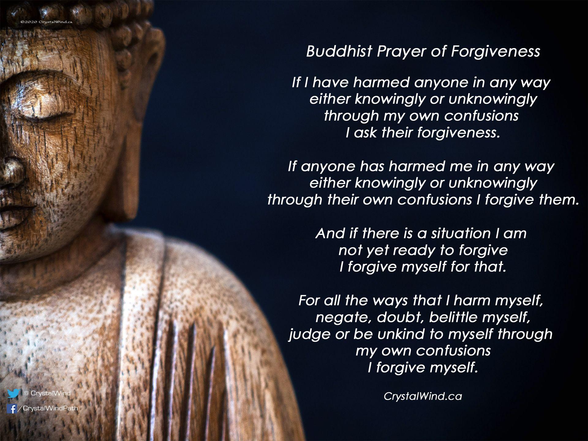 Zen Philosophy Teachings Of Buddha Buddha Teachings Prayer For Forgiveness Zen Philosophy