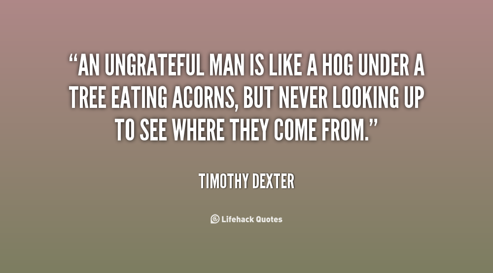An Ungrateful Man Is Like A Hog Under A Tree Eating Acorns But Never Looking Up To See Where They Come From Timothy Someday Quotes Ungrateful Quotes Quotes