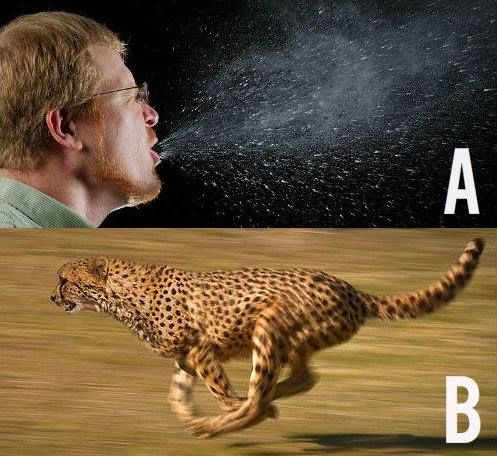 Which Travels Faster A Human Sneeze Or B Cheetah The