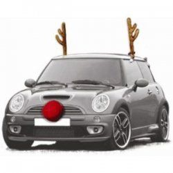 Rudolph With Car Reindeer Antlers And