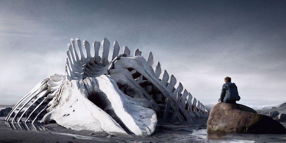 Risultati immagini per leviathan film 2012