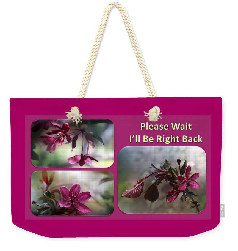 Pin On Tote Bags Nancy's Novelty Photos/Pixels Products