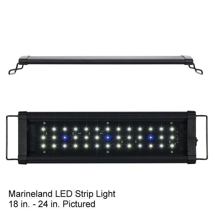 Marineland led strip lights 2399 aquarium pinterest marineland led strip lights 2399 mozeypictures Images