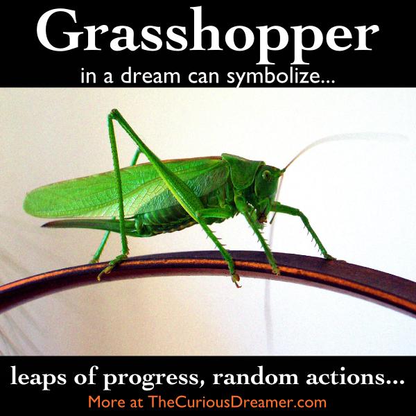 As A Dream Symbol A Grasshopper Can Mean More At