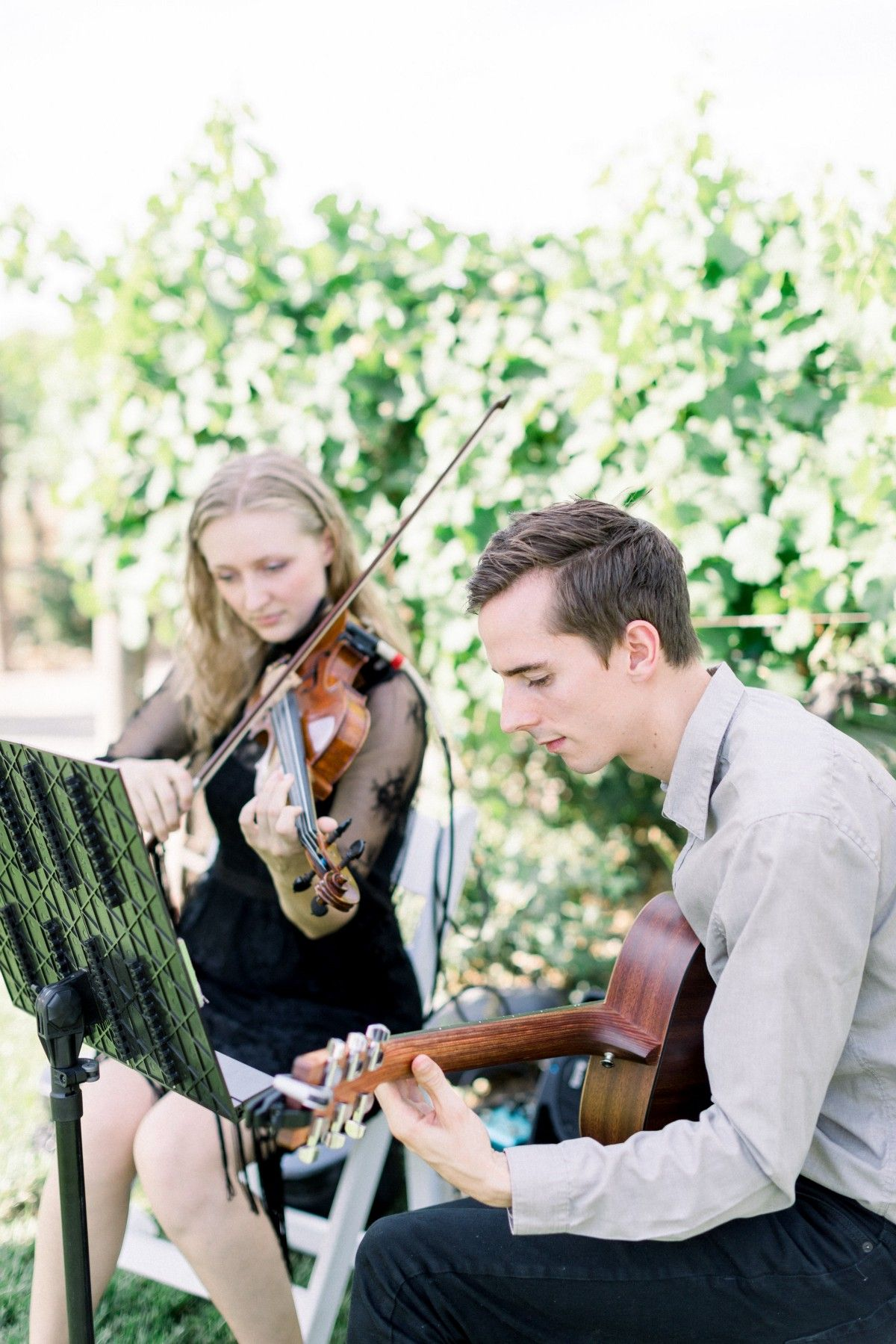 Ocdamia Strings Review Photo sessions, Live band, Live music