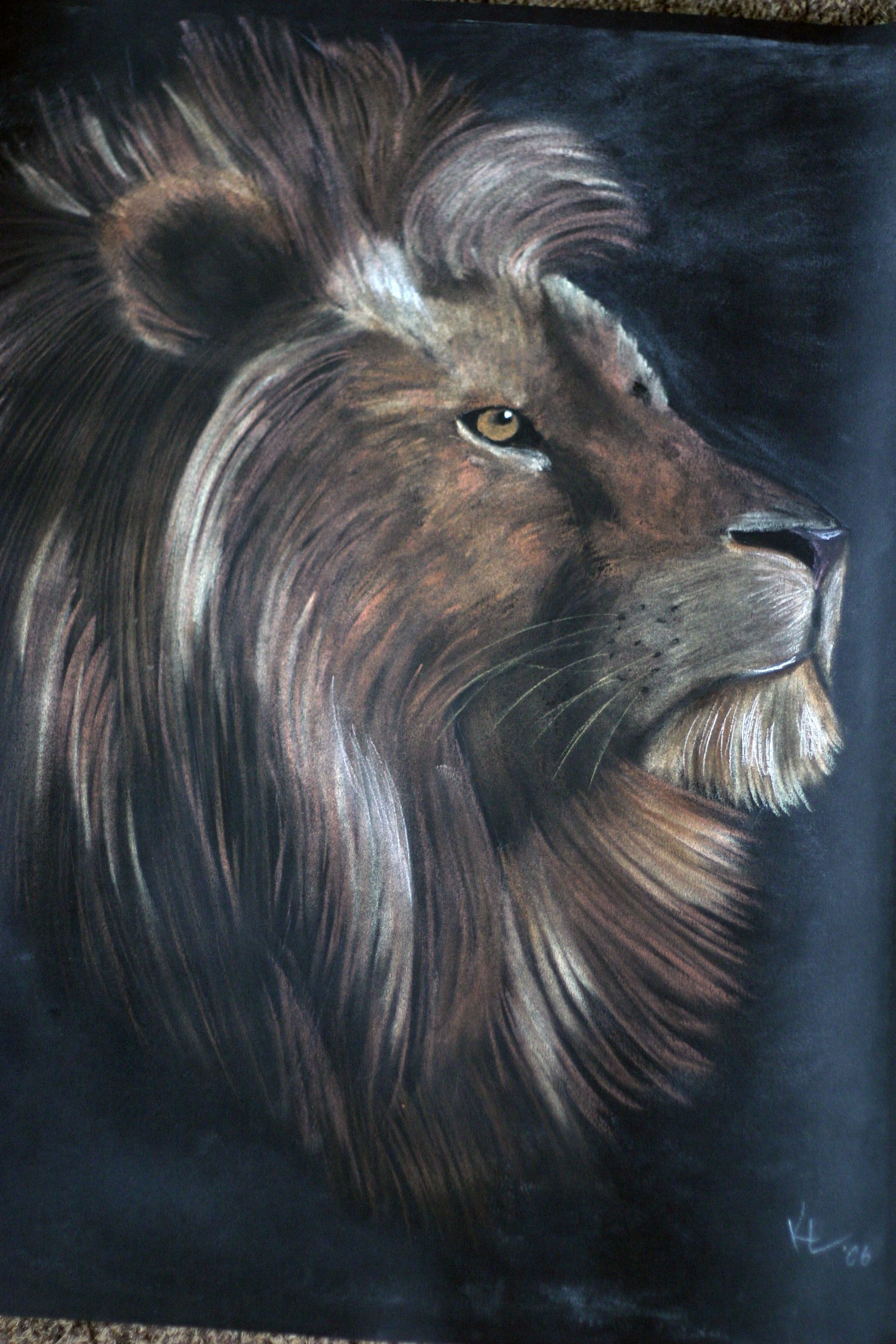 Lion of Judah. Pastel I drew in 2004