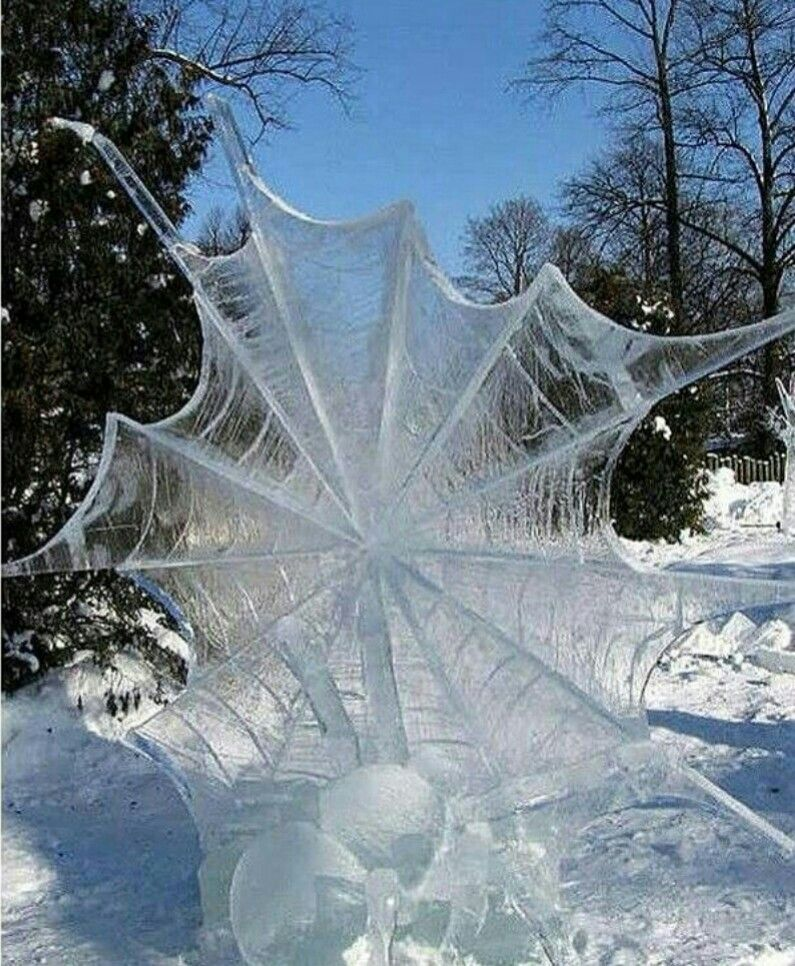 Ice Spider And Web!