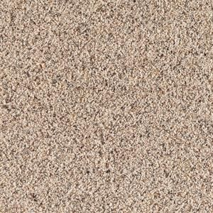 Santa Rosa I Color Beachcomber 12 Ft Carpet 0316d 24 12 At The Home Depot Indoor Carpet Plush Carpet Polypropylene Carpet