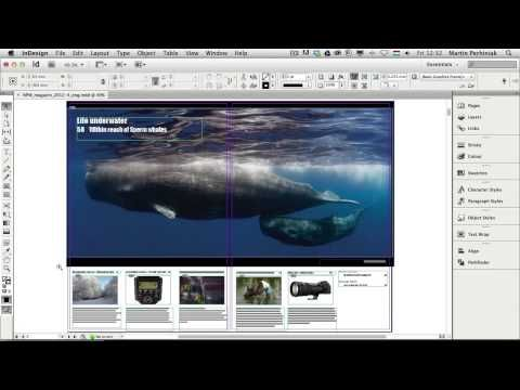 An Introduction to Adobe InDesign