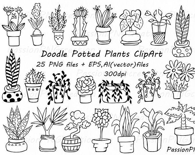 Big Set 44 Hand Drawn Flowers Clipart Flower Element Flower Etsy Plant Doodle How To Draw Hands Clip Art
