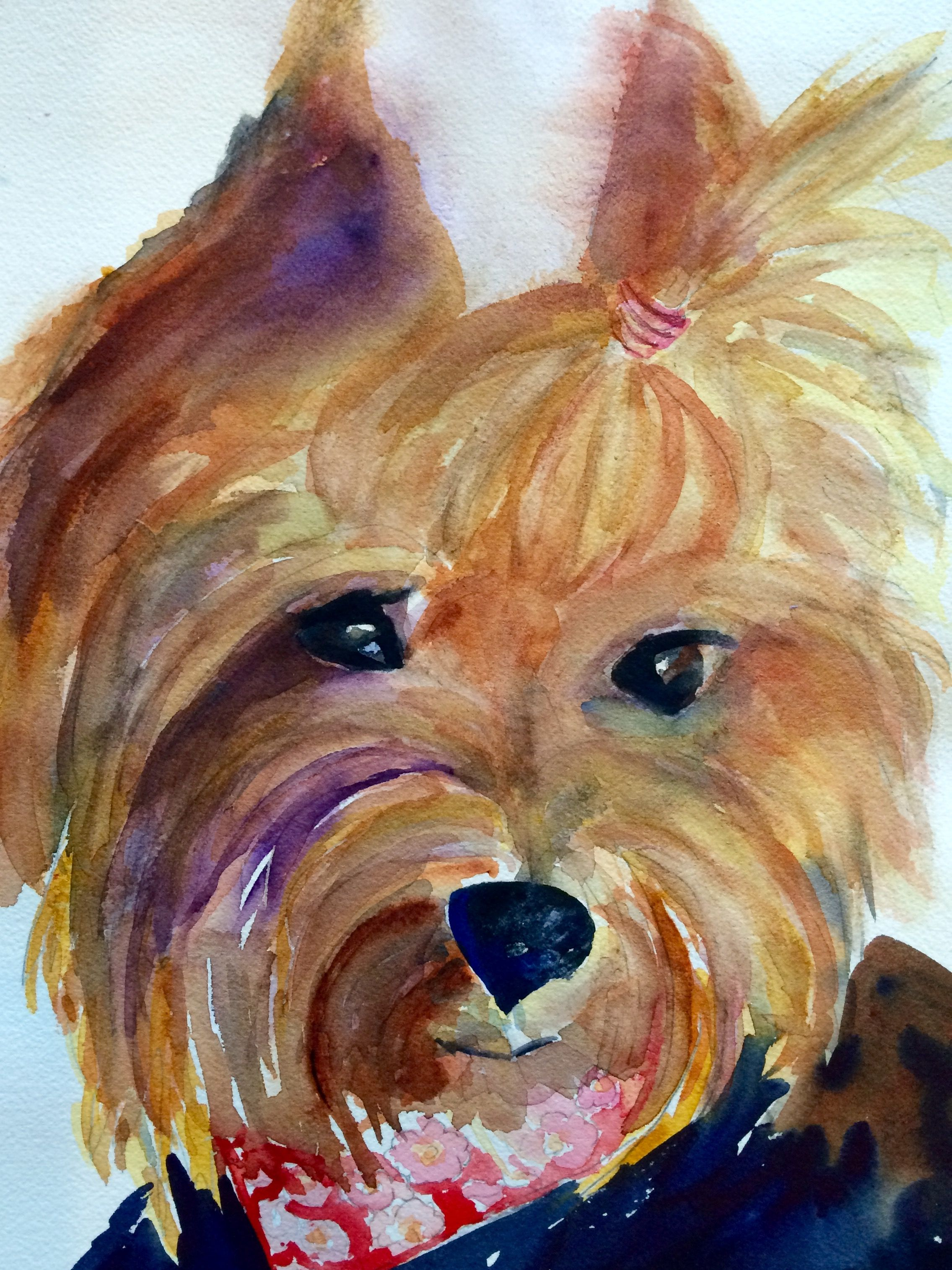 Watercolor artist in texas -  Isabella Yorkie By Texas Watercolor Artist Karen Scherrer