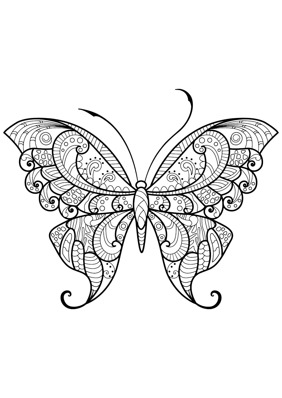 Butterfly Beautiful Patterns 12 Butterfly With Beautiful Patterns 12 From The Gallery Butterfly Coloring Page Insect Coloring Pages Mandala Coloring Pages