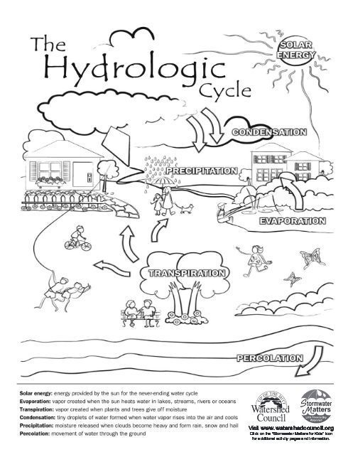 #coloring #cycle #hydrologic #pages #2020 Check more at