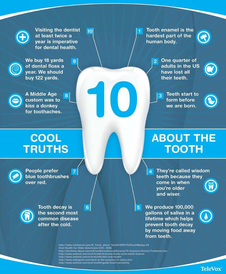 Did you know? Tooth enamel is the hardest part of the body
