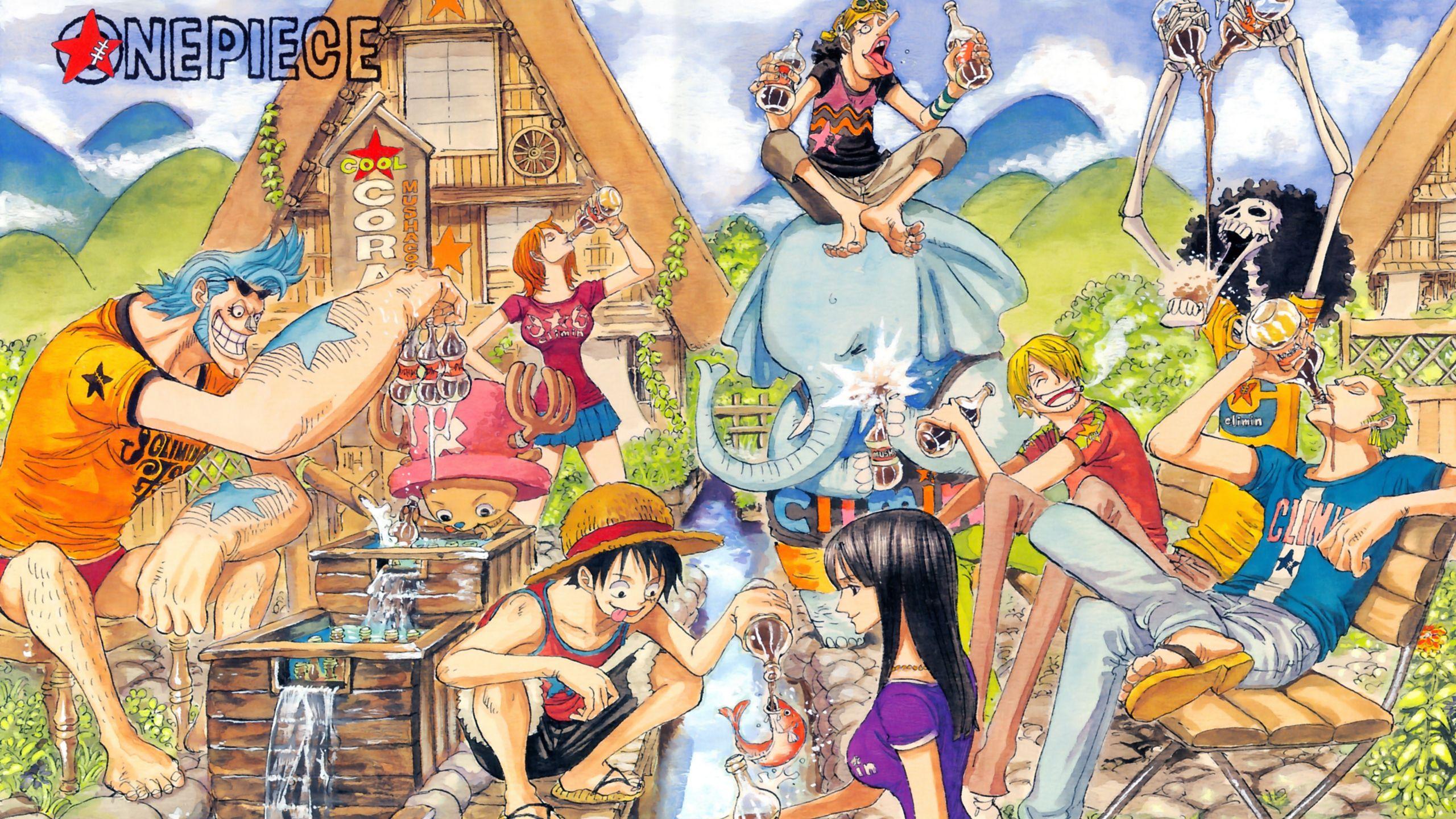 One Piece 566 Wallpaper 1081428 ワンピース 扉絵 ファイター