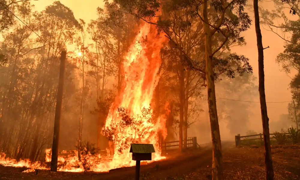Australia fires blazes 'too big to put out' as 140
