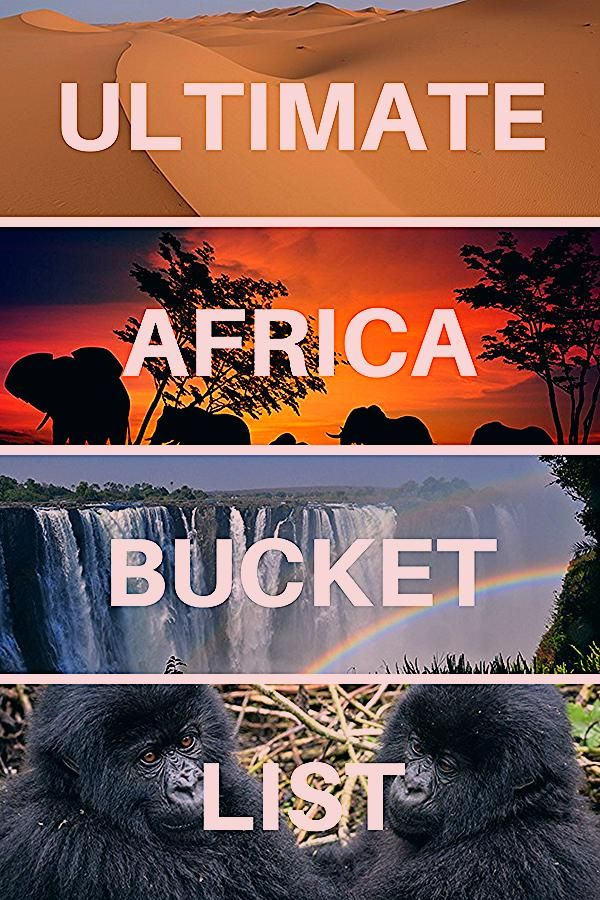 Photo of Ultimate Africa Bucket List: 50 EPIC Things to Do!