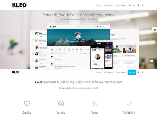 33 Best Free and Premium BuddyPress Themes