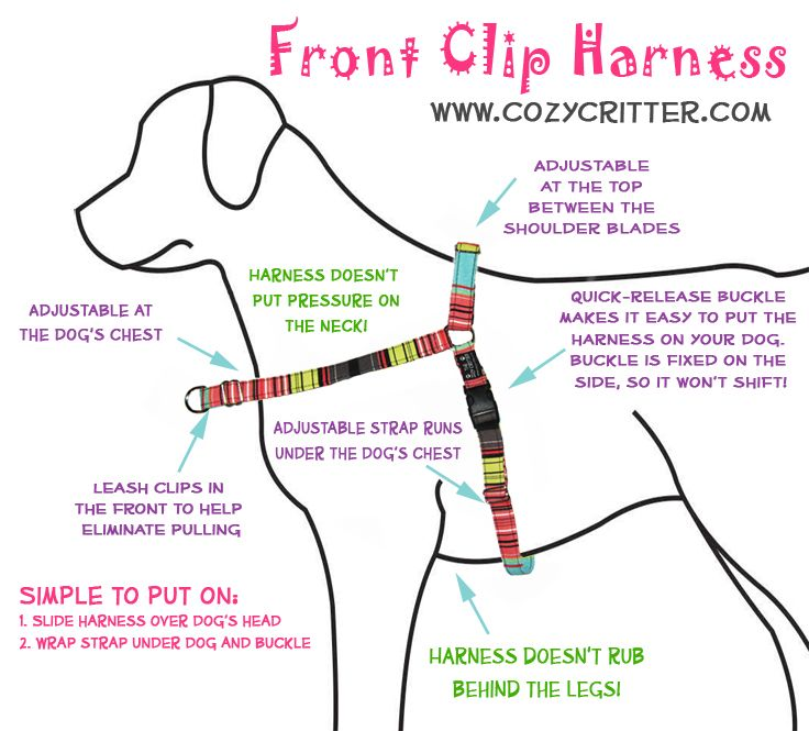 The Cozy Critter Front Clip Harness Harness Custom Dog