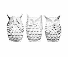 Horen Zien Zwijgen owls