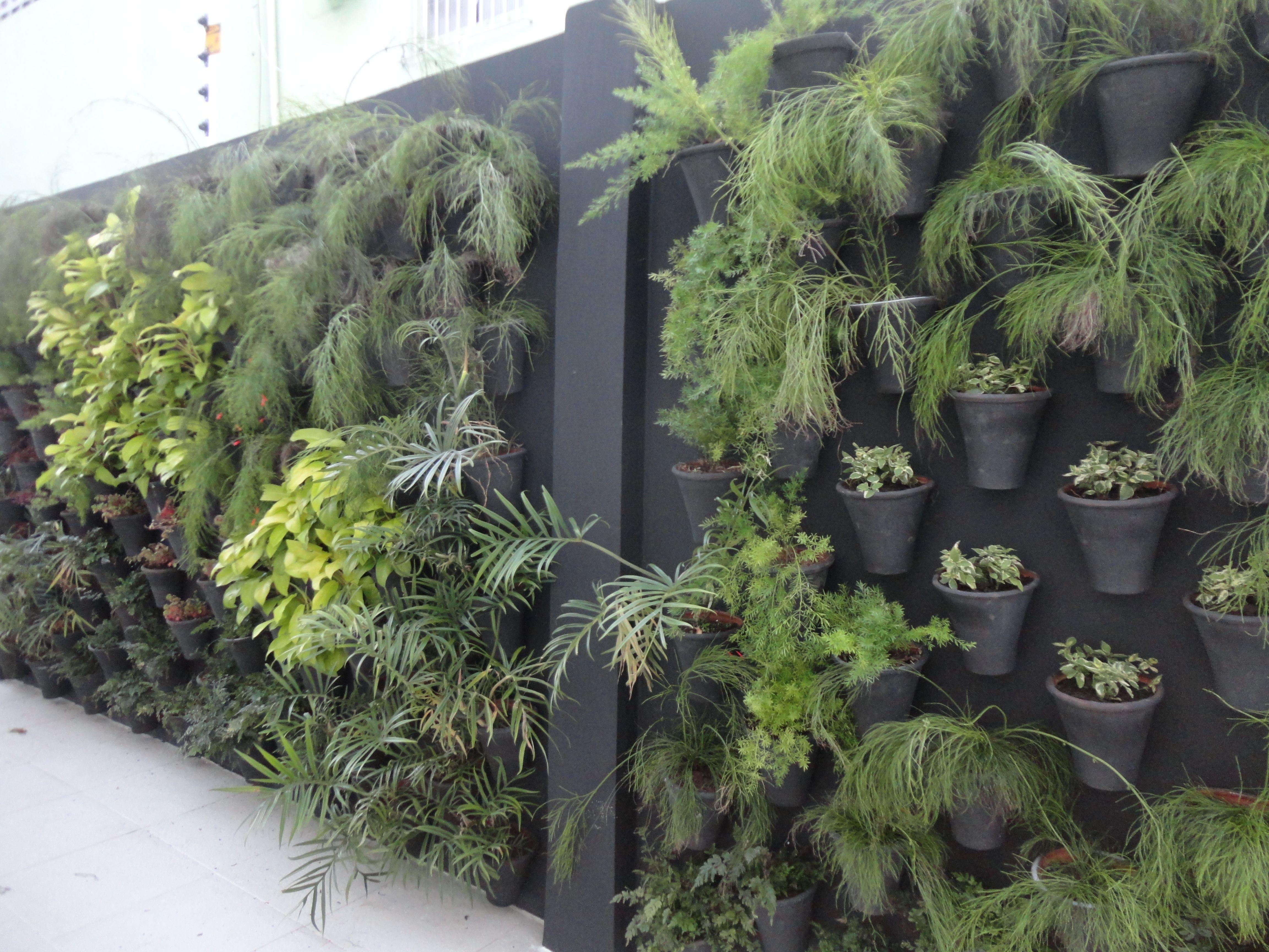 Jardim vertical feito com vasos de cerâmica. Jardins verticais  #7C8C3F 4608x3456