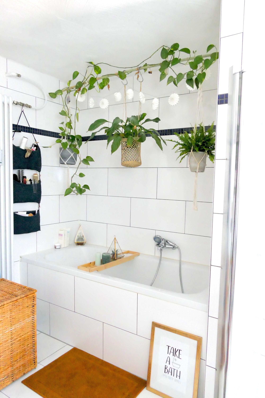 Neue #teppiche fürs #badezimmer #pflanzenliebe #bild…