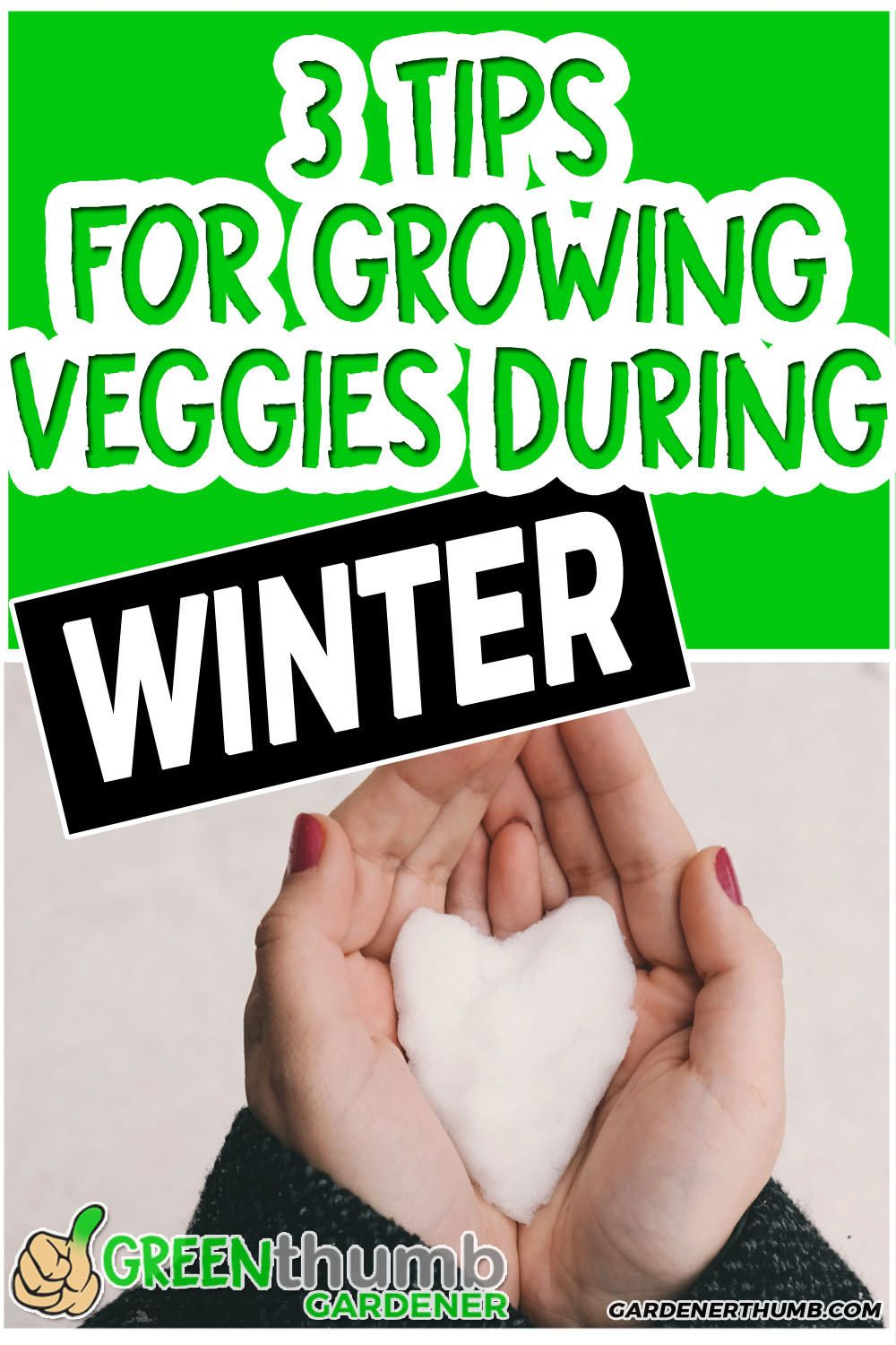 Winter Gardening is simple to do and easy to get started.  You can start planting vegetables during the winter with some basic techniques.    Your winter garden will be successful when you have the right expertise to help guide you.  Check out the book review at the end for one of the premier winter gardening experts. #wintergardening #wintergarden #wintergardening