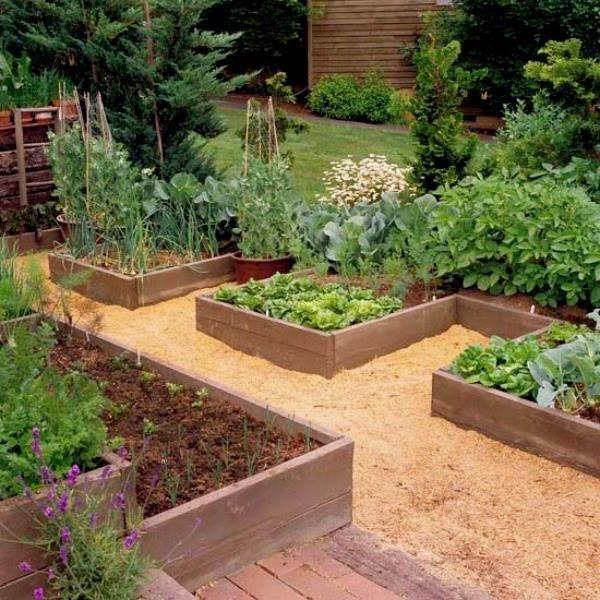 crear un jardín con bancales elevados | plantas y flores