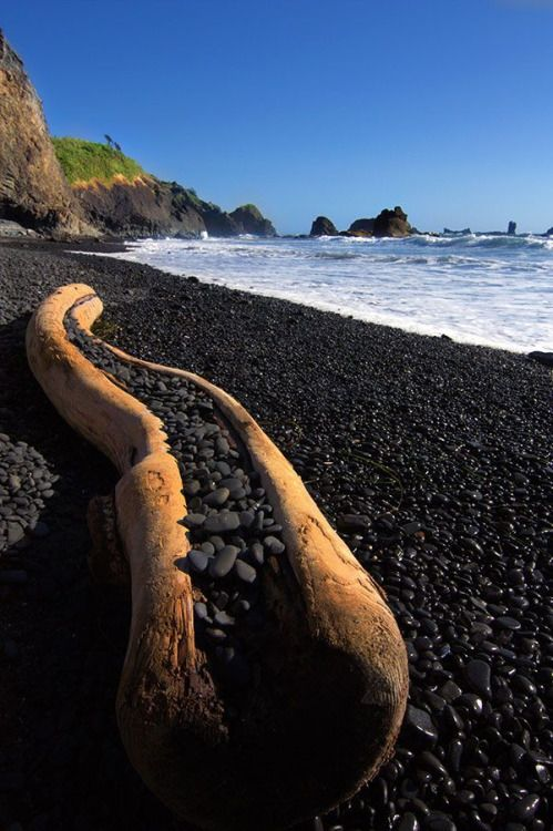 The Black Pebble Beach At Yaquina Bay State Recreational Site Near Newport Oregon A Stairway Leads Down To Area On Left